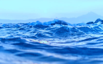 Konceptstudie ska leda till ny forskningsbåt i Kristineberg